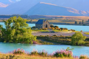 Read more about the article Does New Zealand have too much tourism?